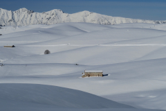 Lessini-Dune Bianche