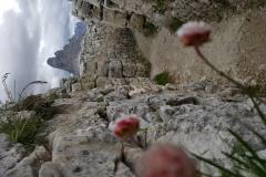 Monte Piana Trincee